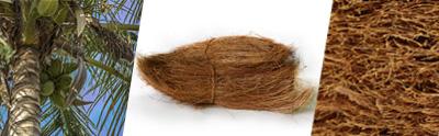 la fibres de coco